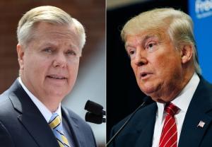Lindsey Graham; Donald Trump